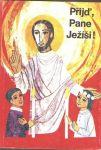 Přijď pane Ježíši Příprava na 1.svaté přijímání.